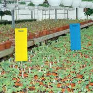 Pest Traps Yellow 40 x 25cm 12 per pack