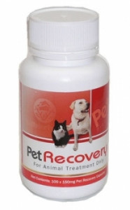 Petvel Recovery