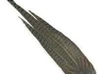 Pheasant Tail Clump - Natural
