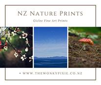 Photography, Nature Prints, Nature Art, Nature Artwork, NZ Nature, NZ Flora