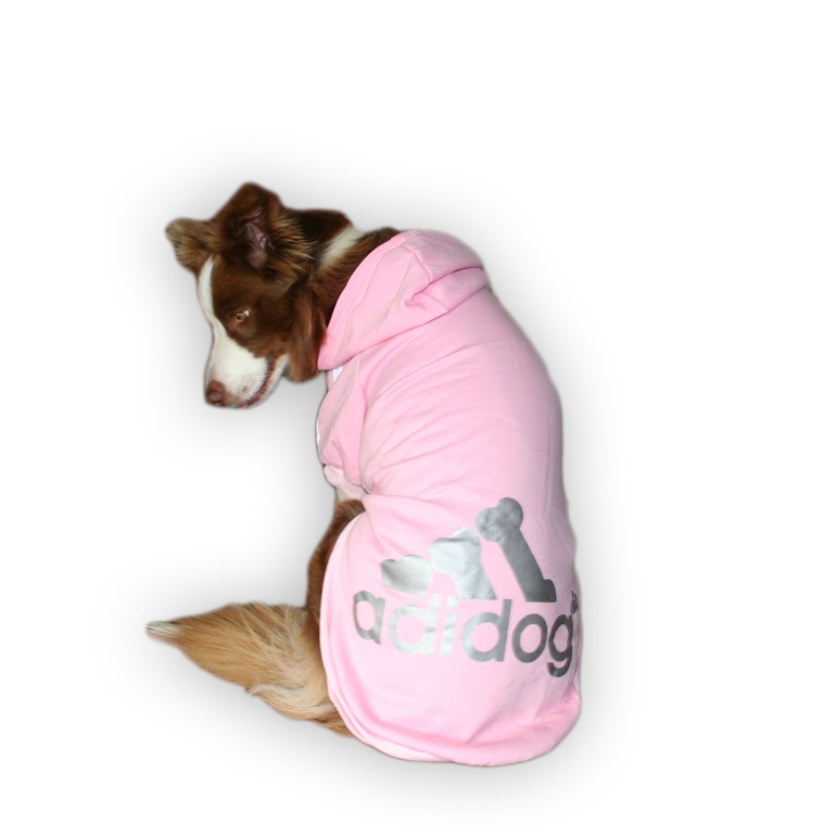 pink adidog for large breed