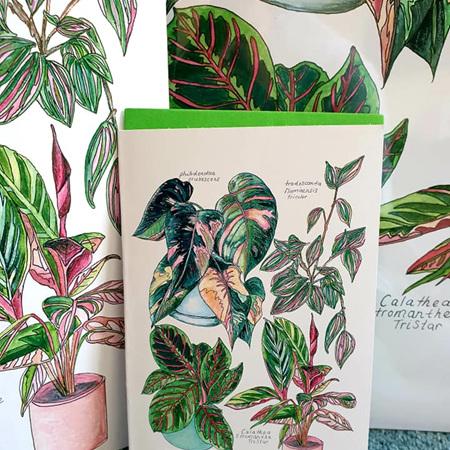 Pink Botanicals Edition 1 A5 Print