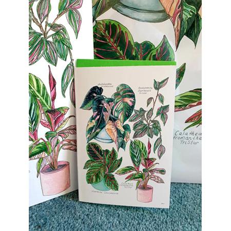 Pink Botanicals Edition 1 Greeting Card