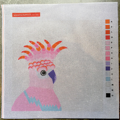 Pink cockatoo canvas only