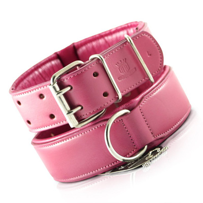 Rogue Royalty Classic Collar Pink
