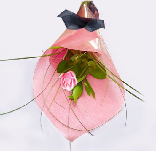 pink single rose