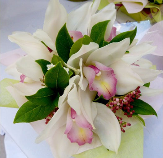 pink tones orchid posy bowl