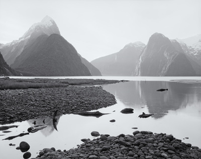 Piopiotahi Milford Sound No. 1
