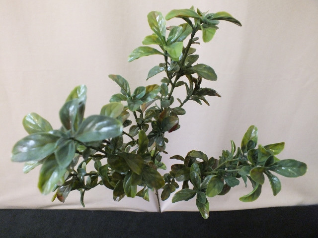 Pittosporum spray artificial silk fake not real