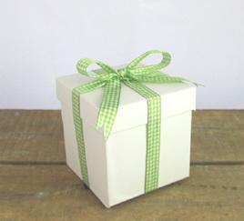 Plaid Check Ribbon x 5 Metres: Green & White