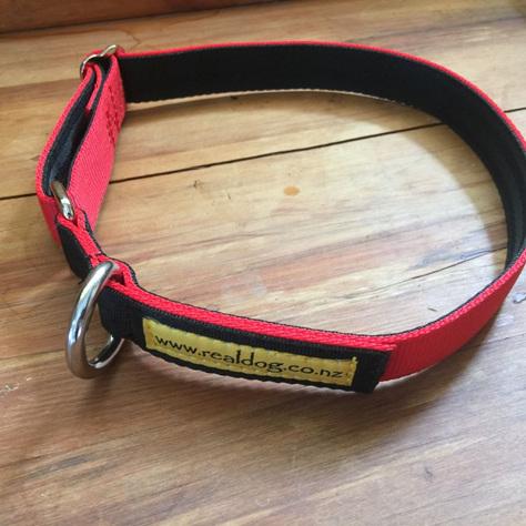 Plain Circle Collar