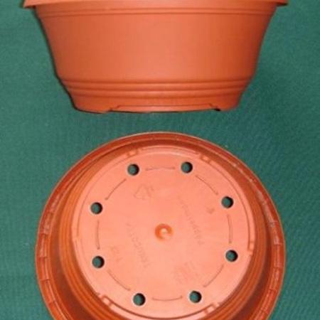 Planting Bowl