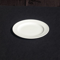 Plate Side 170mm