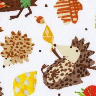 Play Date - Hedgehogs