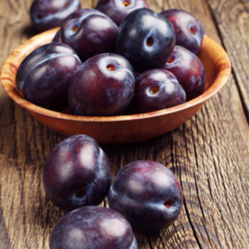 plum flavour concentrate