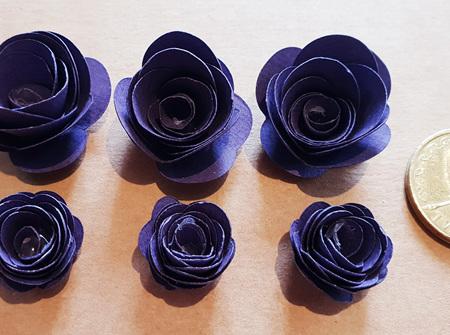 Plum mini roses