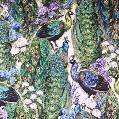 Plumage - Peacocks
