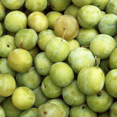 Plums Green Gage Organic Approx 500g