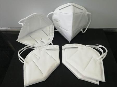 PM2.5 (95% Protection) Single Mask