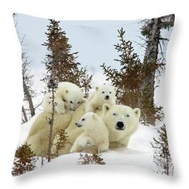 Polar Bear Family Cushion Cover