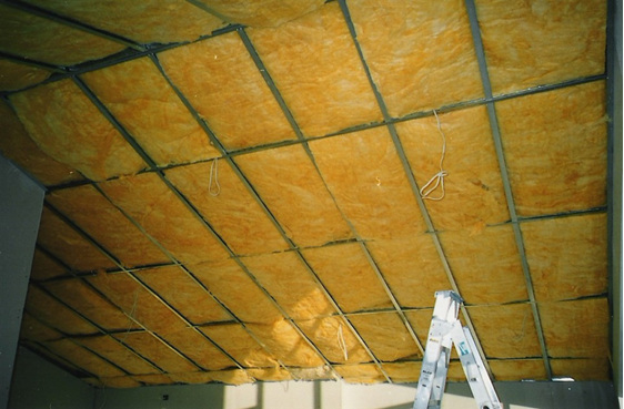 Polygold Insulation ceiling biscuit