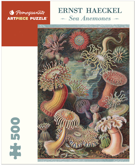 Pomegranate 500 Piece Jigsaw Puzzle: Ernst Haeckel: Sea Anemones