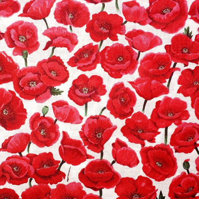 Poppies - Field