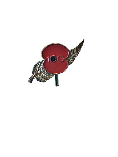 Poppy Fern Pin