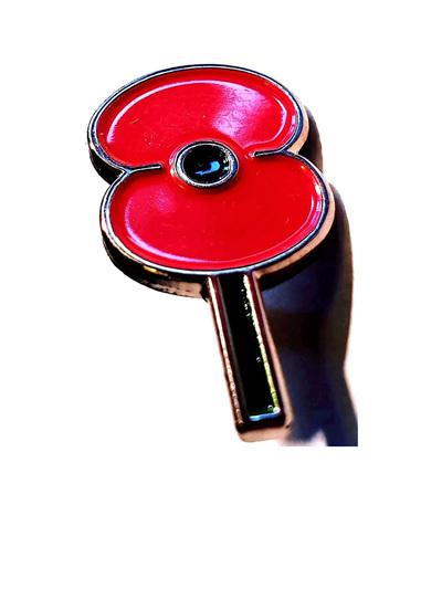 Poppy Pin