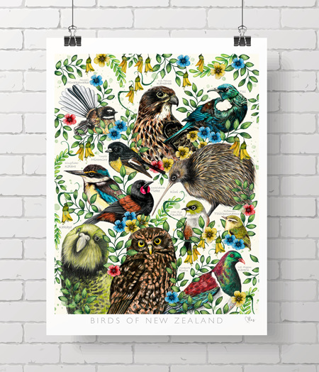 POSTER - NZ birds on A3- pre folded to A4 for shipping