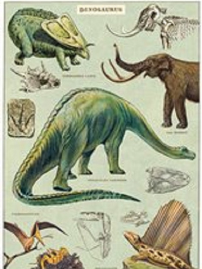 Poster or Gift Wrap - Dinosaurs