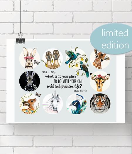 poster: wild precious life - last one!!