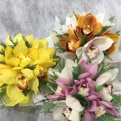 Posy Bowl of Seasonal Orchids