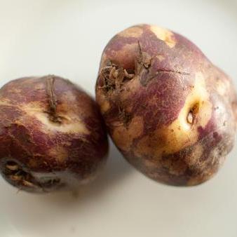 Potatoes Purple Heart or Heritage Maori Certified Organic 500g