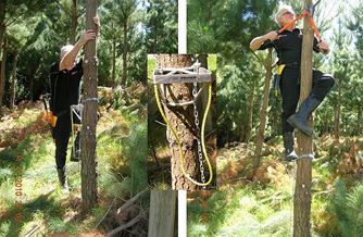 Pro Pruner forestry and horticulture  pruning equipment