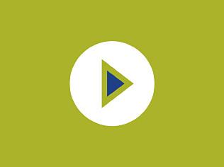 Procedure To Plaster - Video