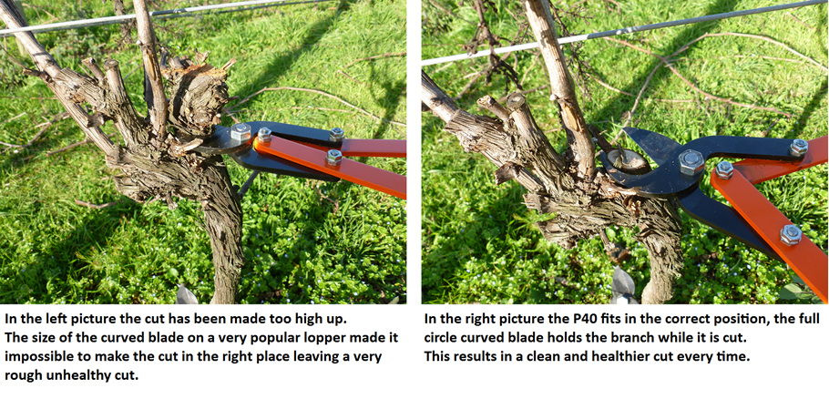 pruning loppers, horticulture pruning loppers