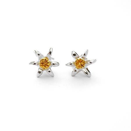 Puawananga (New Zealand Clematis) Stud Earrings