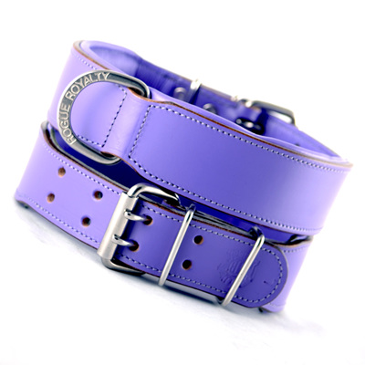 Rogue Royalty Classic Collar Purple