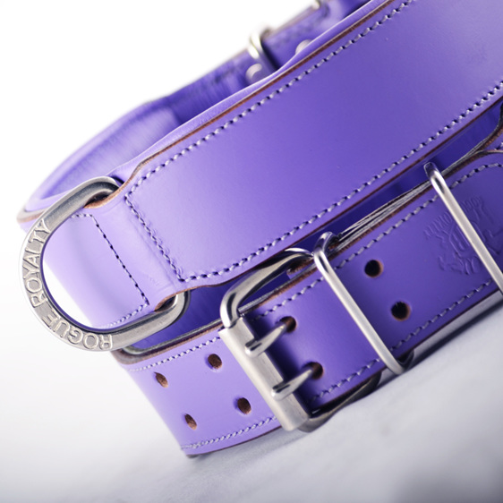 Purple Leather Dog Collar for Large Dogs by Rogue Royalty