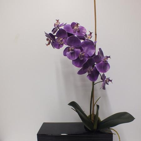 Purple Orchid in Black Ceramic 2316