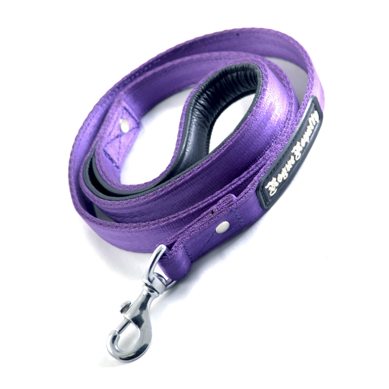 Purple Strong Nylon Dog Leash by Rogue Royalty