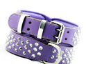 Purple Studded Leather Dog Collar for Large Dogs by Rogue Royalty