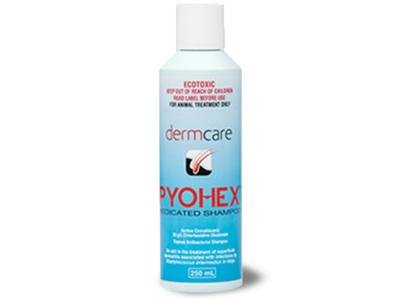 Pyohex Shampoo