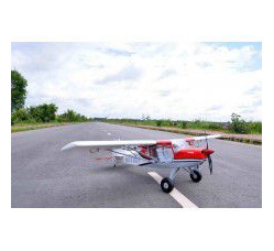 RANS S 20 Raven - 80 inches - 20cc 0.17m3 by Seagull Models
