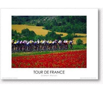 Red Flowers - 1996 Tour de France