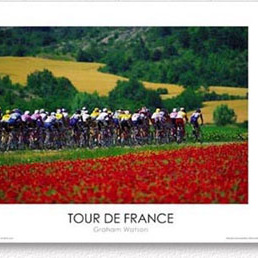 Red Flowers - 1996 Tour de France