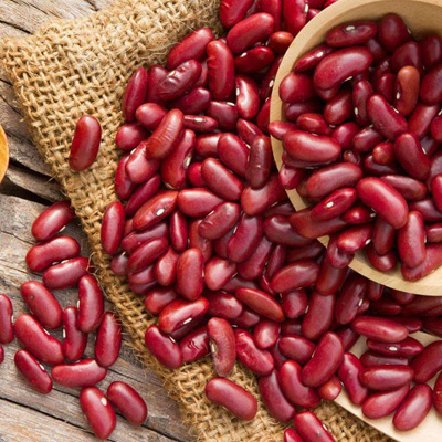 Red Kidney Beans Dried Organic Approx 100g