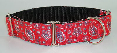 Red Paisley Collar