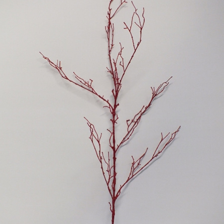 Red Twig Branch 1446